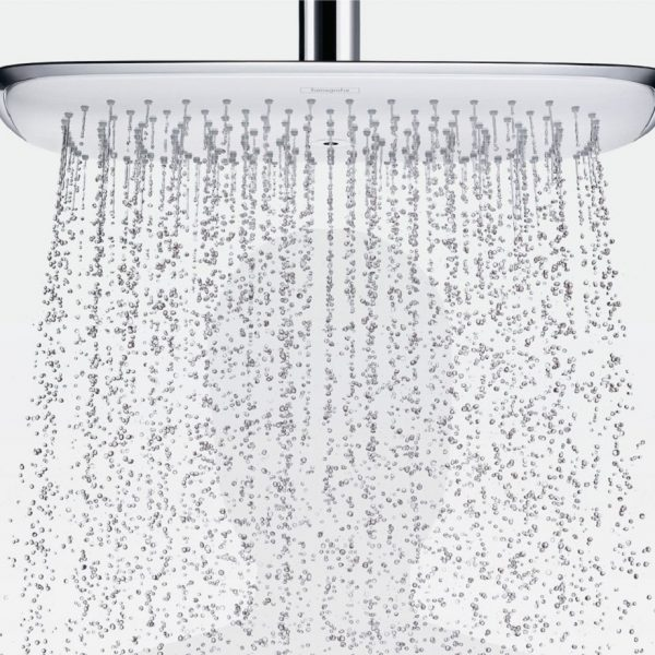 Hansgrohe Puravida Shower Head